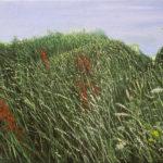 © Benoît Moreau - 2017-Dans l'herbe VIII- 29x35cm