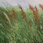 © Benoît Moreau - 2017-Dans l'herbe VI - huile sur toile - -29x35cm