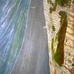 © Benoît Moreau - Falaise - huile sur toile - 162 x 114 cm- 2011 - collection particulière France