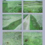 © Benoît Moreau - Pays de Caux (série N° 8 - blés&coquelicots)- Huile sur toile - 6 x 22 x 27 cm - 2006 (collection particulière/France)