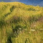 © Benoît Moreau - Carré jaune - huile sur toile - 42x42 cm- 2021