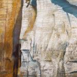 © Benoît Moreau - Paréidolie N°3 - huile sur toile - 116 x 73cm - 2020 - collection particulière - France