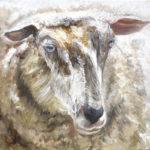 © Benoît Moreau - I - mouton - Huile sur toile - 42x42 cm - 2016