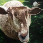 © Benoît Moreau - III - moutons - Huile sur toile - 100x100 cm - 2016