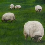 © Benoît Moreau - IV - moutons - Huile sur toile - 50x50 cm - 2016 - collection particulière France